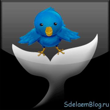 Твиттер: оформление и установка твиттер-клиента Saezuri.