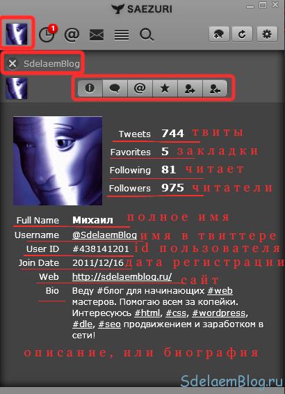 Информация о пользователе твиттер-клиента Saezuri.