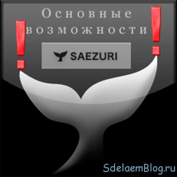 Основные возможности твиттер-клиента saezuri